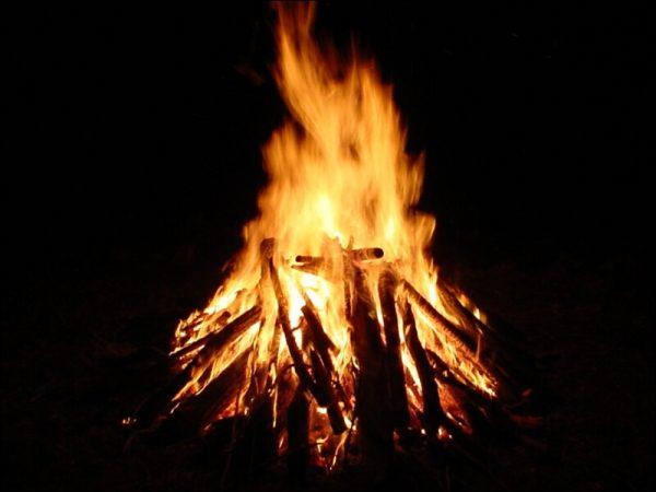 Quel bois choisir pour faire un feu de camp ?