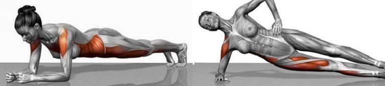 Programme d'entrainement complet de gainage abdominal