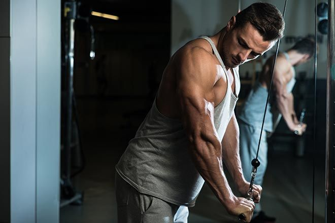 conseils muscler triceps