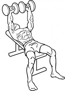 développé-couché avec haltères