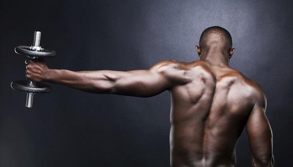 Exercice pectoraux haltère