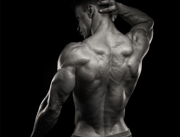 Photo of Se muscler le dos : exercices et programme d'entrainement en quelques semaines